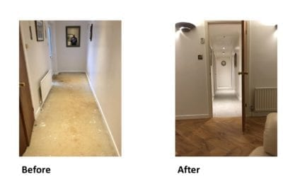 IOBAC Design Floors In Your Home